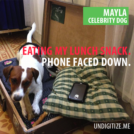 Eating My Lunch Snack. Phone Faced Down.