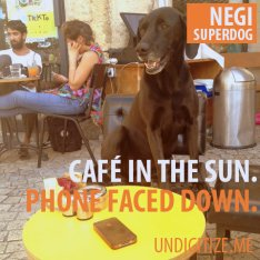 Cafe In The Sun. Phone Faced Down.