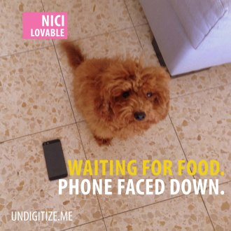 Waiting For Food. Phone Faced Down.