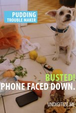 Busted! Phone Faced Down.