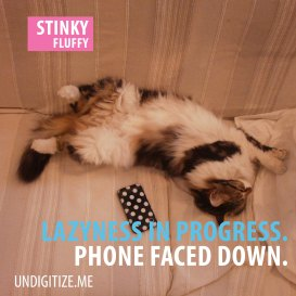 Laziness In Progress. Phone Faced Down.